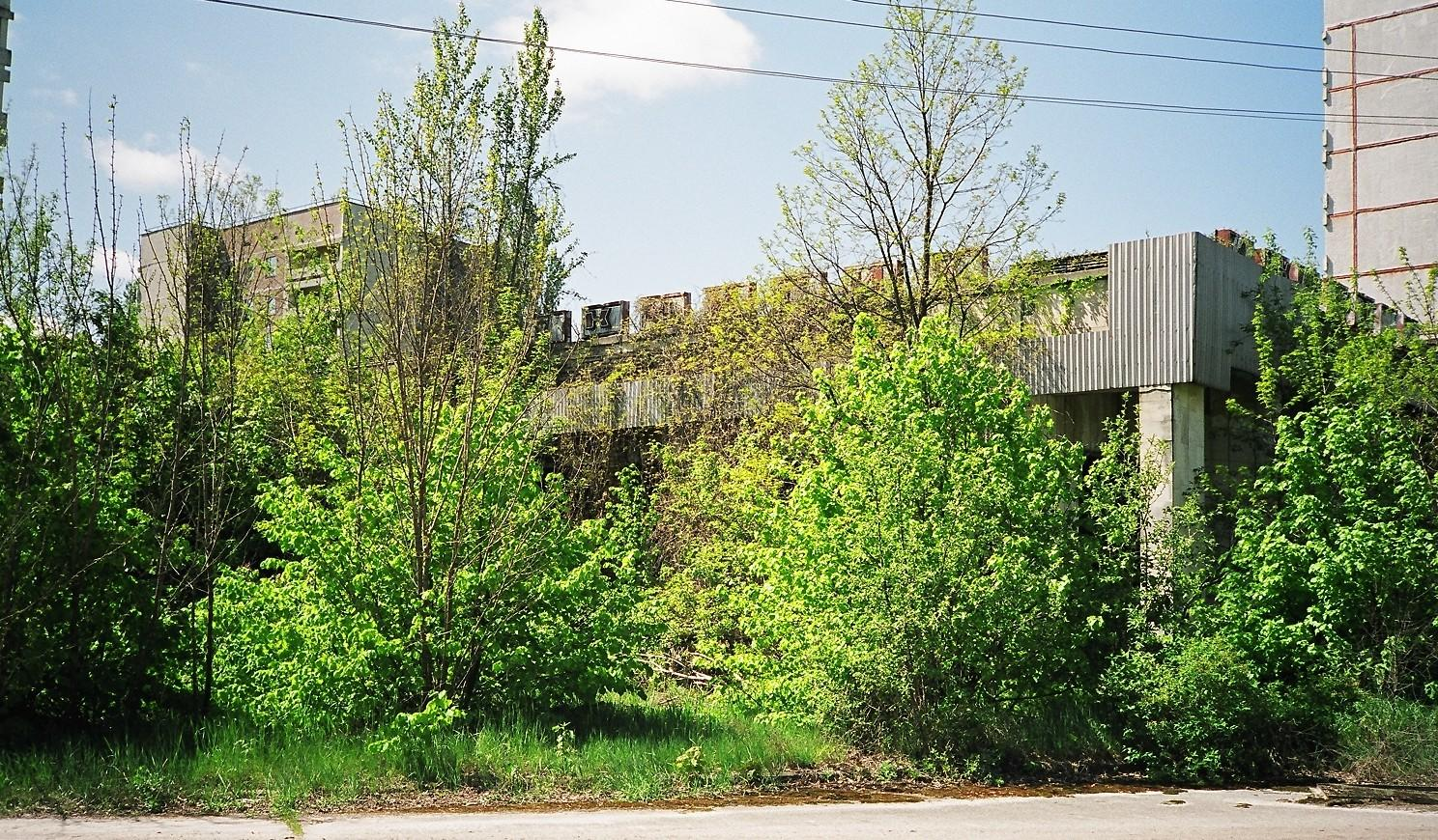 one of the many shops in pripyat now loosing b rance ian