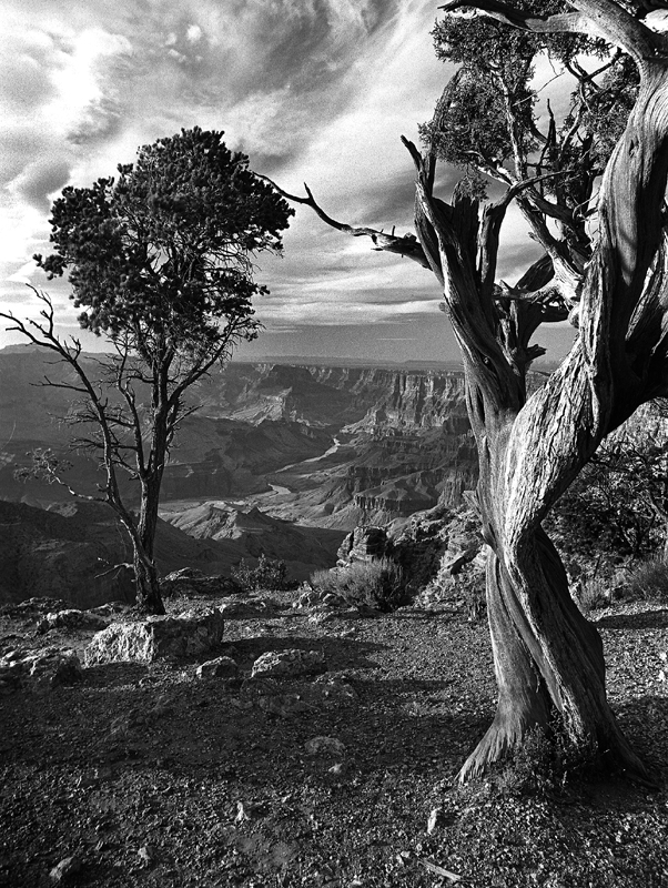 photo of the grand canyon shot from south rim ging michael