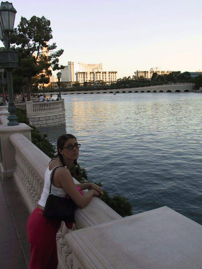 taking in the view by bellagio lake author n nicholls kyle
