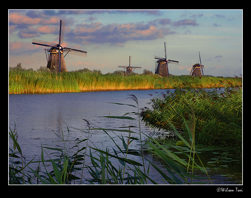 a dutch landscape author tsoi wilson