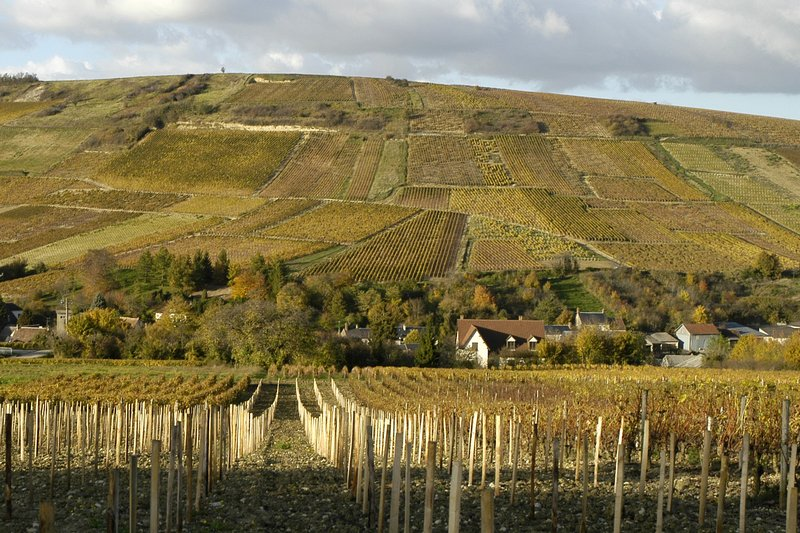 sancerre patchwork author dupin eric