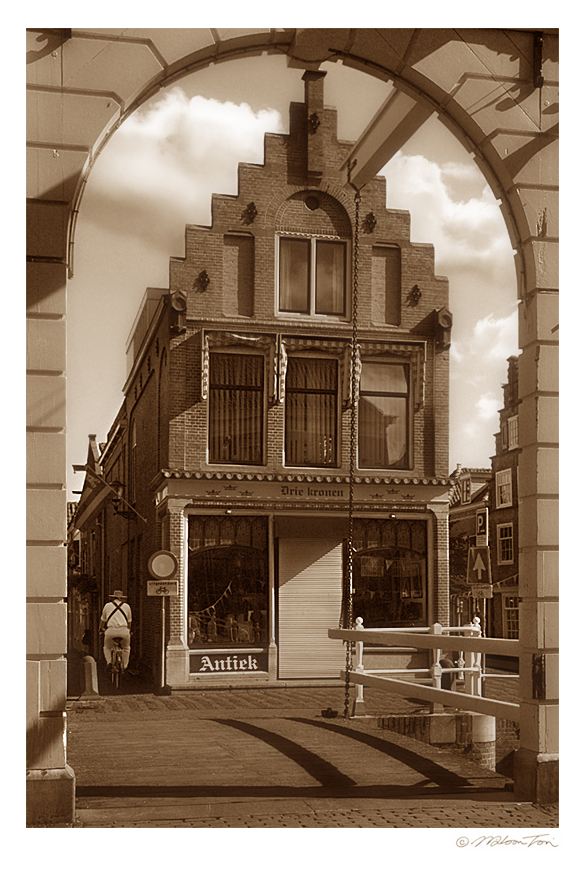 a dutch town sepia author tsoi wilson