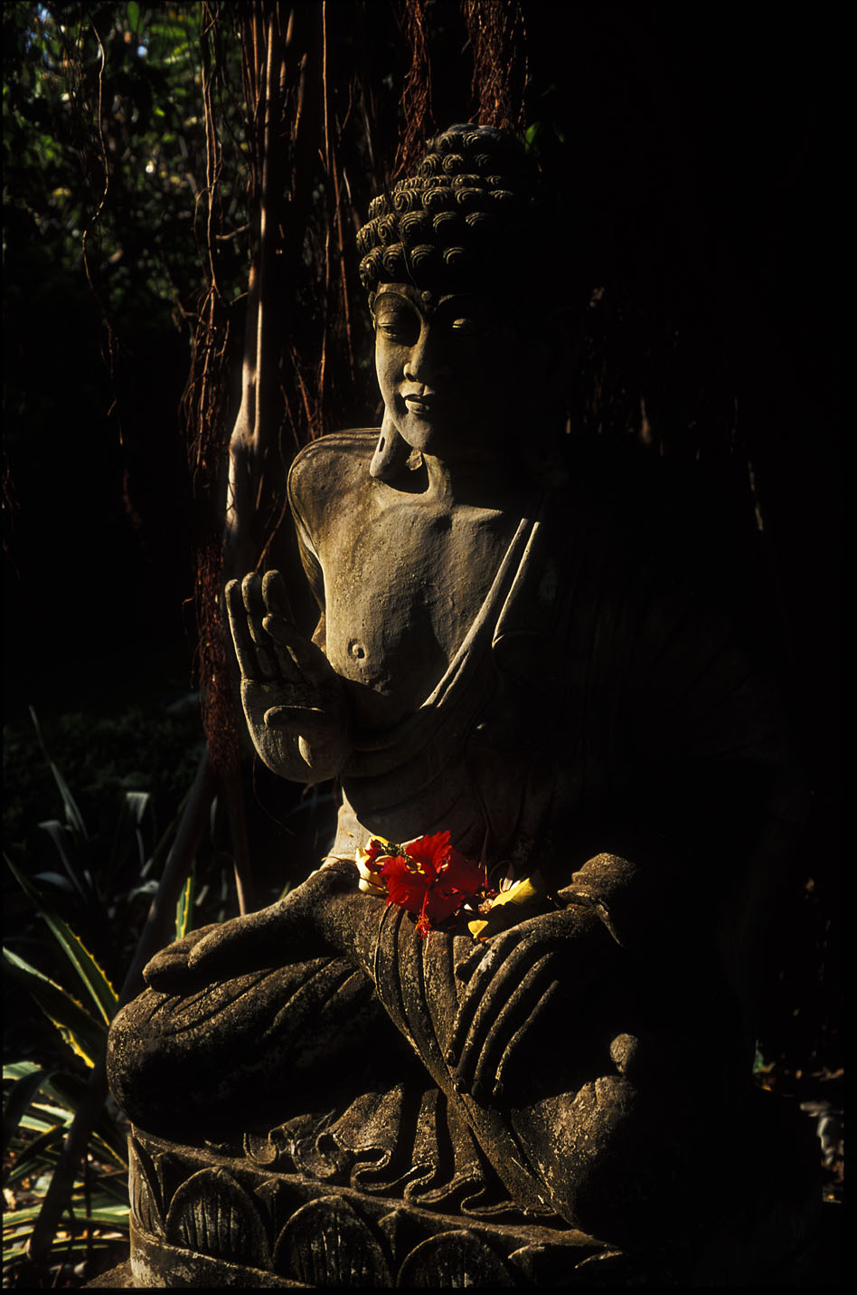 buddha statue bali author h michael