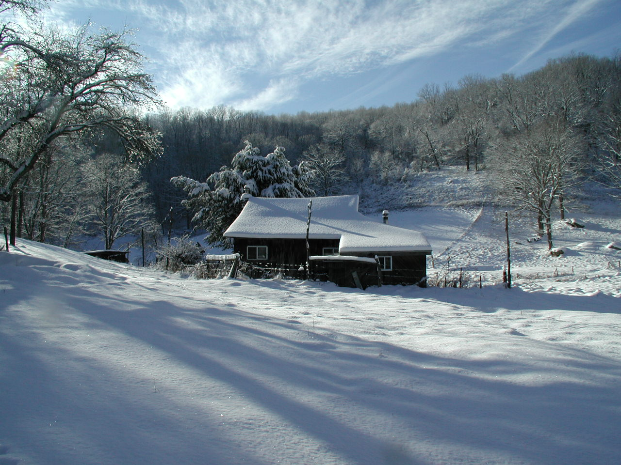 cabin in the snow author sava gregory and verena
