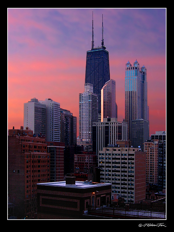 early morning in windy city author tsoi wilson