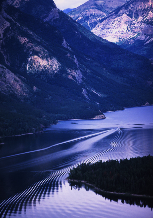 waterton s vision author holland dave