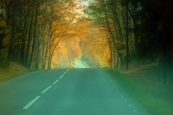 the road to fall author vanourkova jana