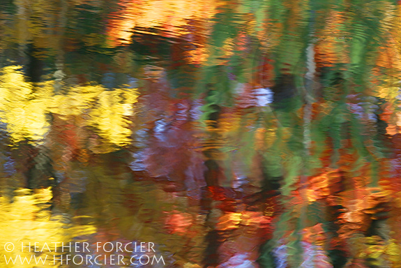 fall foliage reflections vermont author forcier h heather