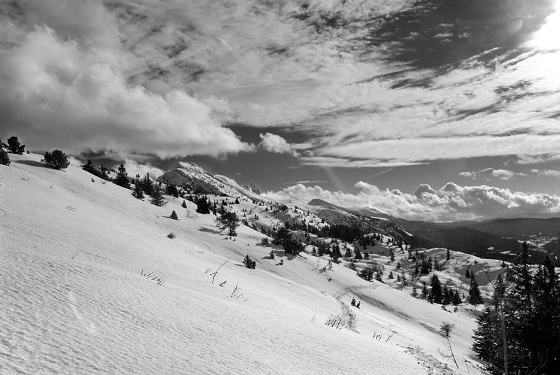 up to lans en vercors author dupin eric