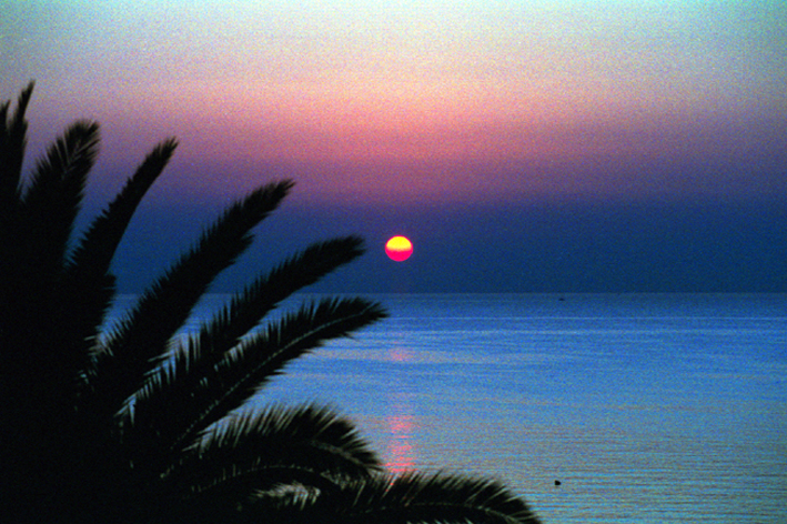 dawn solanto sicily author sampieri mario