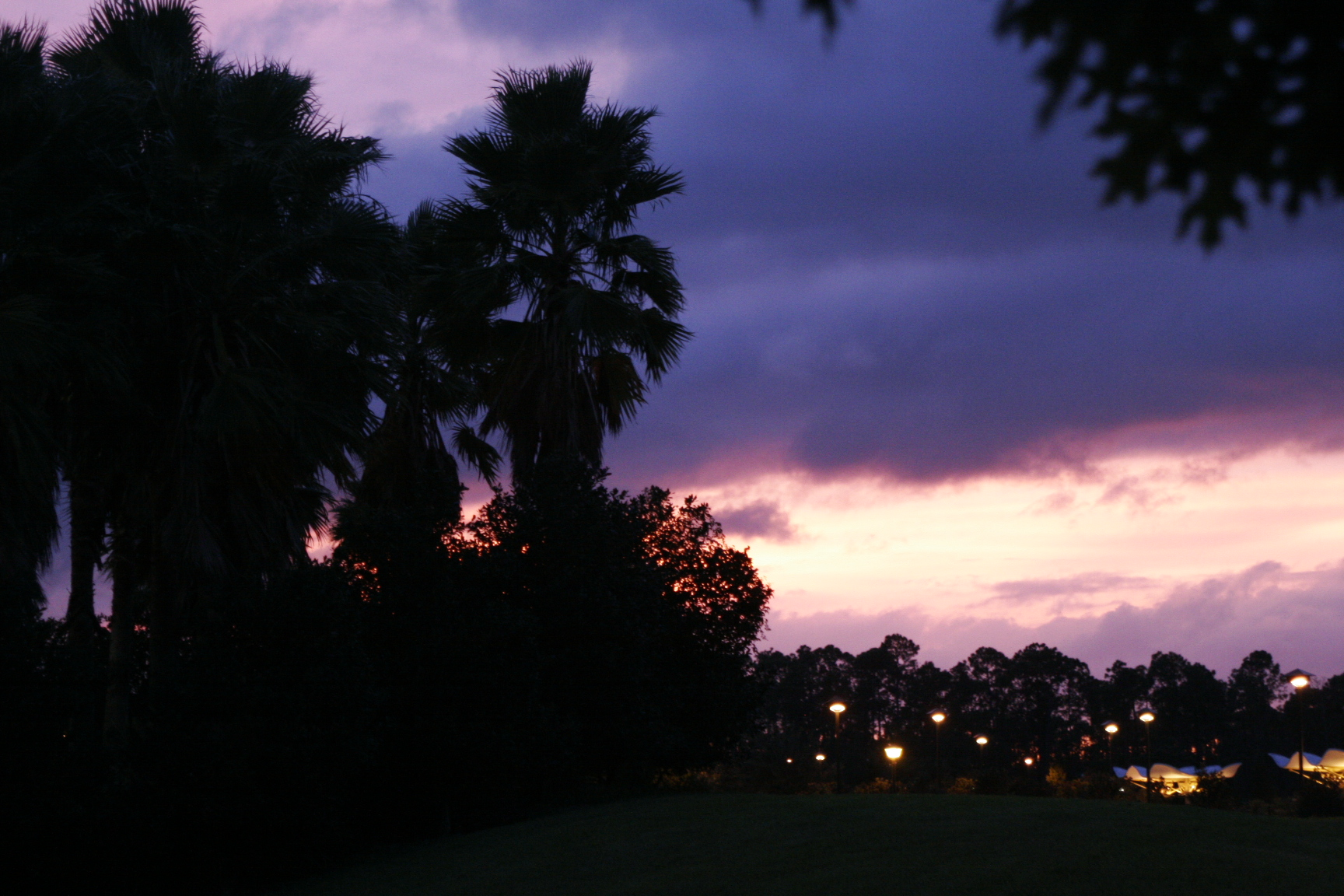 florida sunset author relyea blair