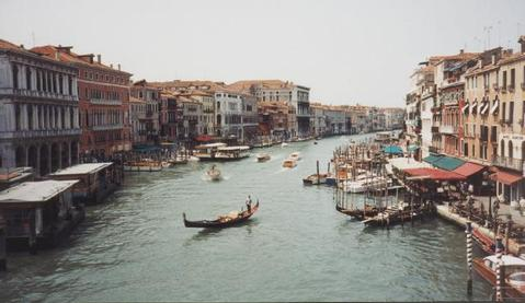 view from the rialto bridge author cunniff greg