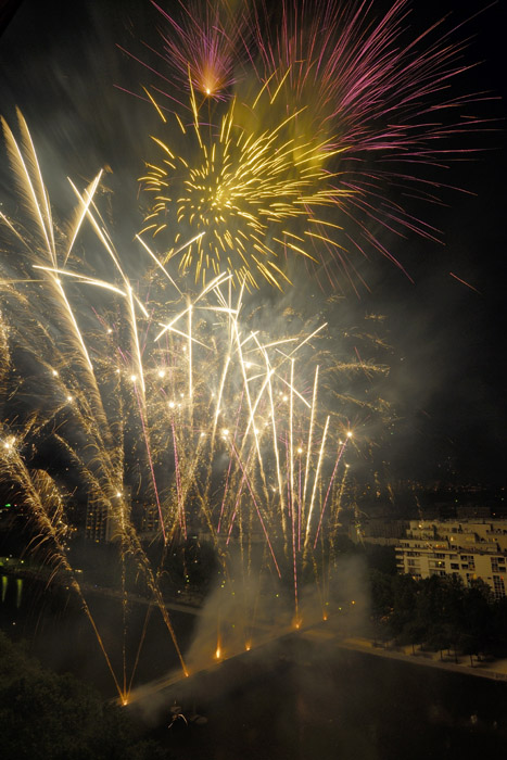 firework from home author dupin eric
