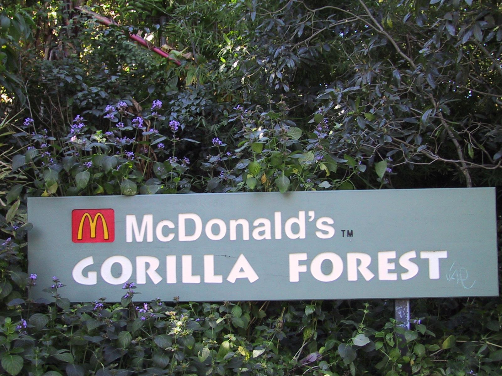 mcdonald s gorilla forest author greenspun philip
