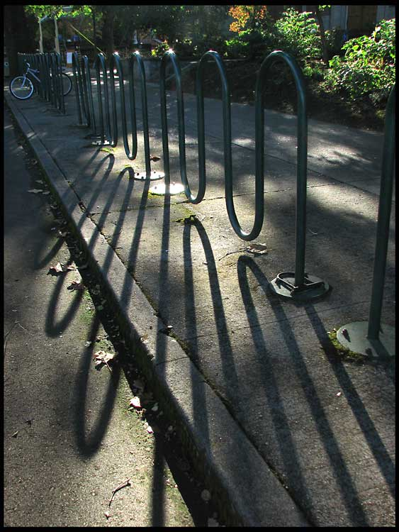 bicycle rack author patterson steve