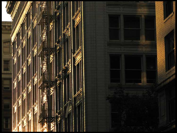 morning light on offices i author patterson steve