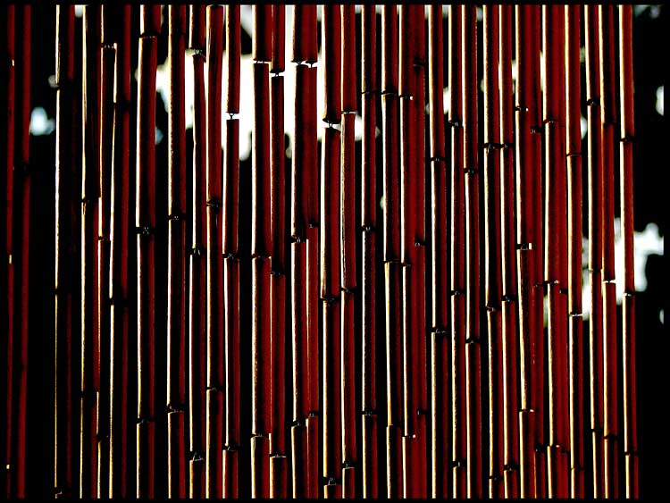 bamboo curtain author patterson steve