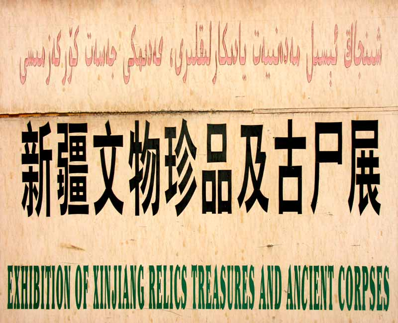 the rosetta stone of arabic chinese english autho downs jim