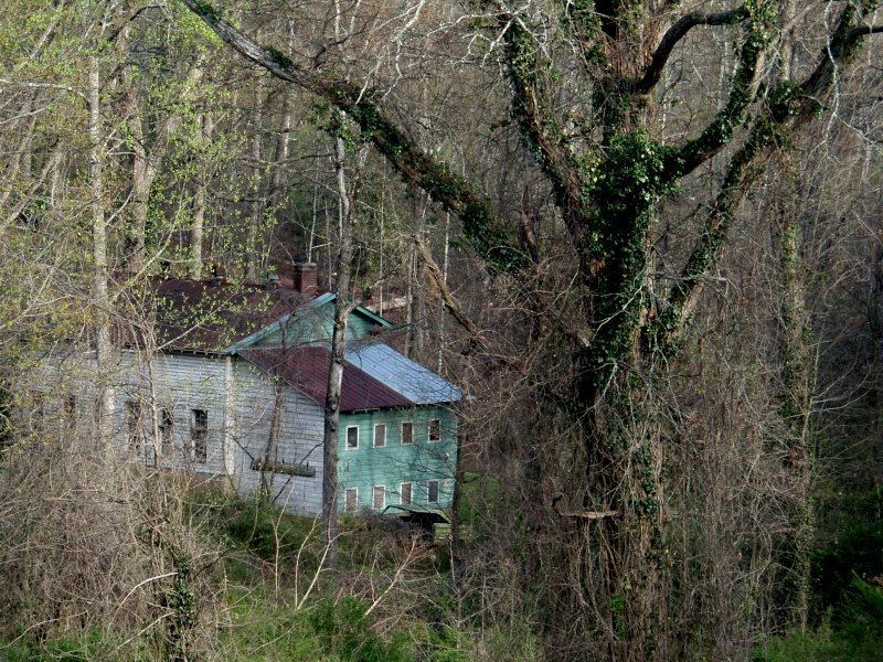 house in the woods author kelly landrum