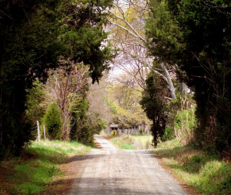 country road early afternoon author kelly landrum