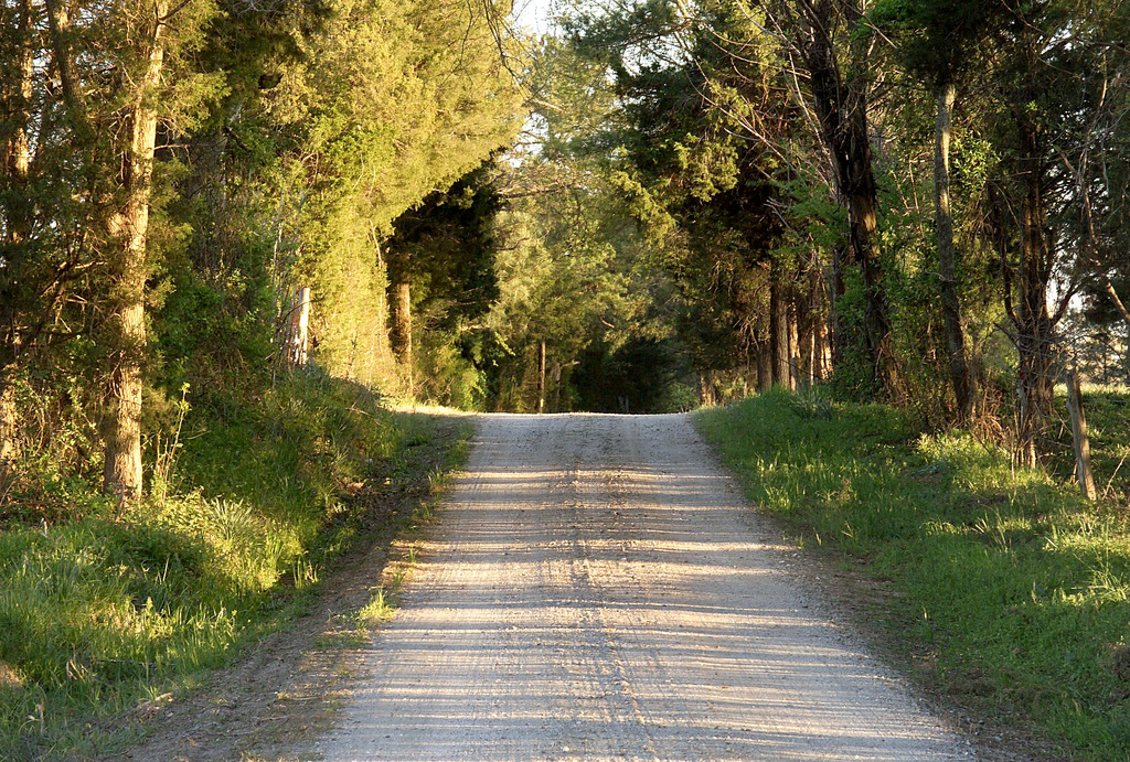 country road looking south afternoon author kelly landrum
