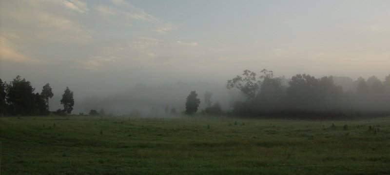 morning mists please view larger author kelly la landrum