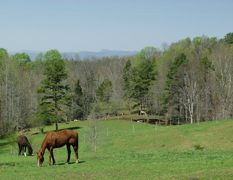 pasture with nantahalas in background author kell kelly landrum