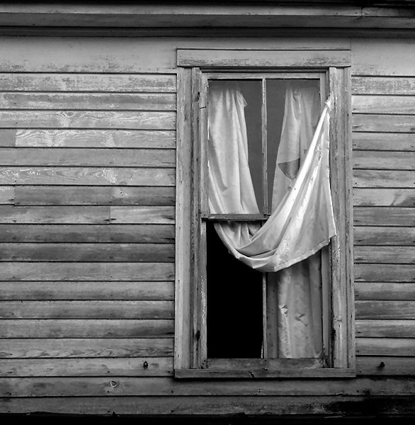 ghosts at the window author kelly landrum