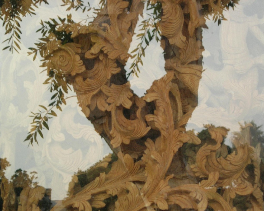 wood carving through tree shadow author dreizler bob