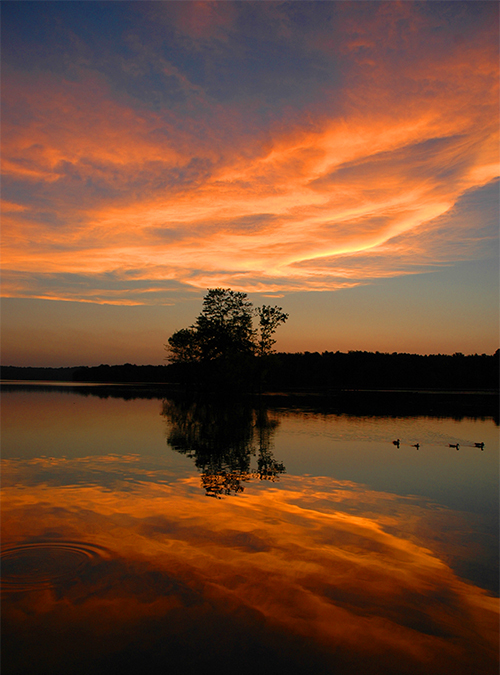 dusk at loch raven author gutowski anthony