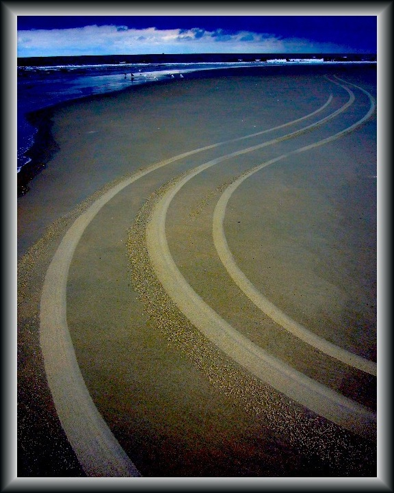 tracks on a lonely beach author franz manuel