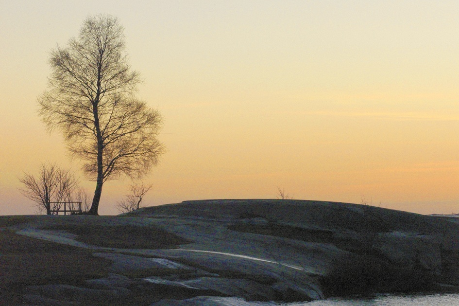promise of spring author soini hannu