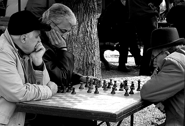 chess masters author tache adrian