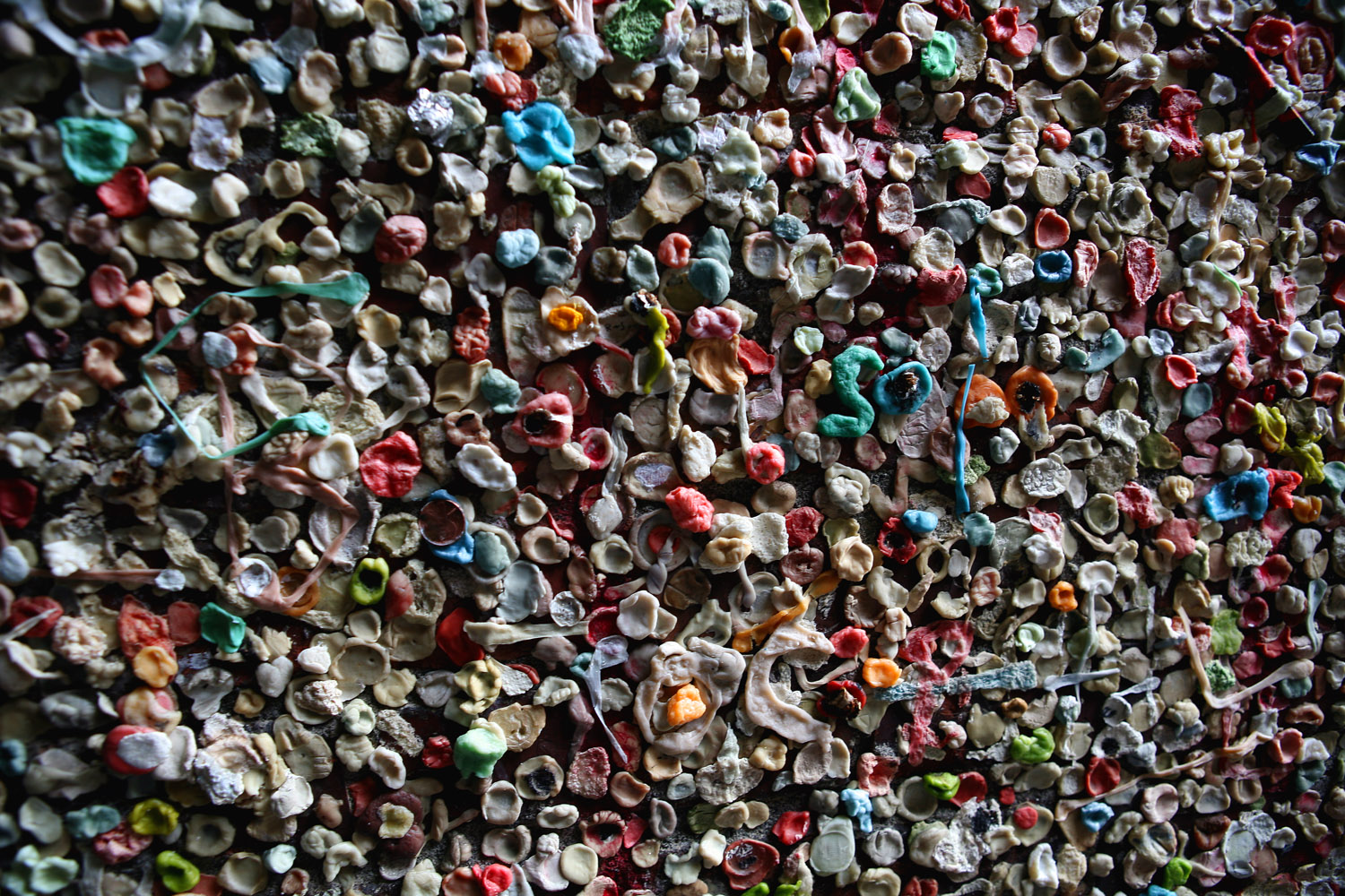 chewing gum wall author root josh