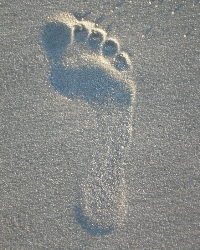 footprint in the sand author dreizler bob