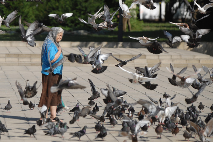 a old woman in chisinau and pigeons around her ursu mihail