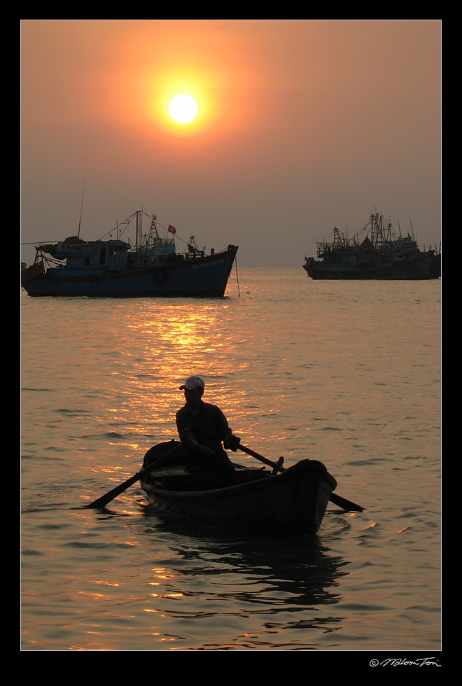 sunset in vietnam author tsoi wilson