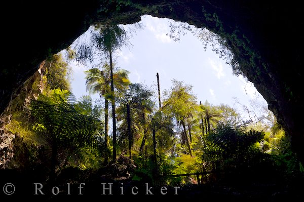 entrance to ruatapu cave meaning sacred is al hicker rolf