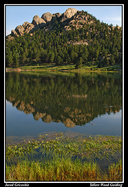 lily lake reflection author gricoskie jared