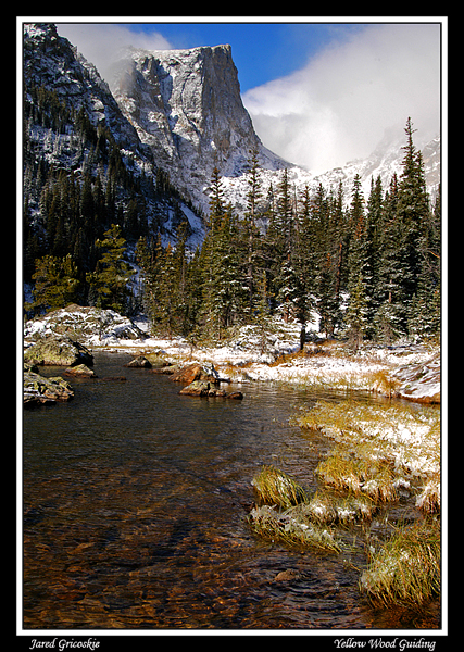 dream lake author gricoskie jared