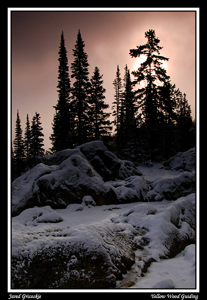 first snowy morning author gricoskie jared