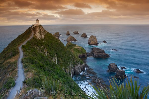 nugget point lighthouse new zealand author hicker rolf