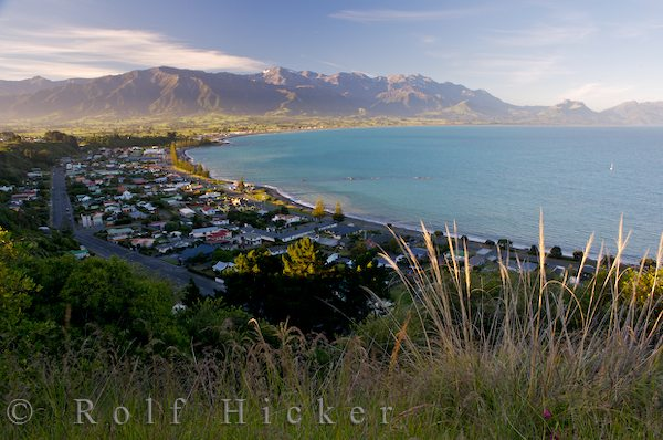 kaikoura townsite from lookout point shakespeare r hicker rolf