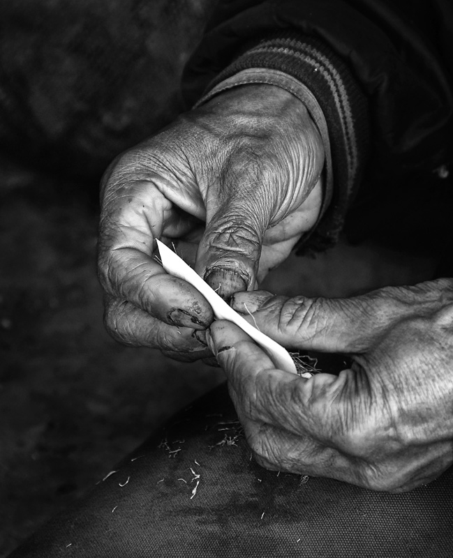 the rolling hand author yohan musin