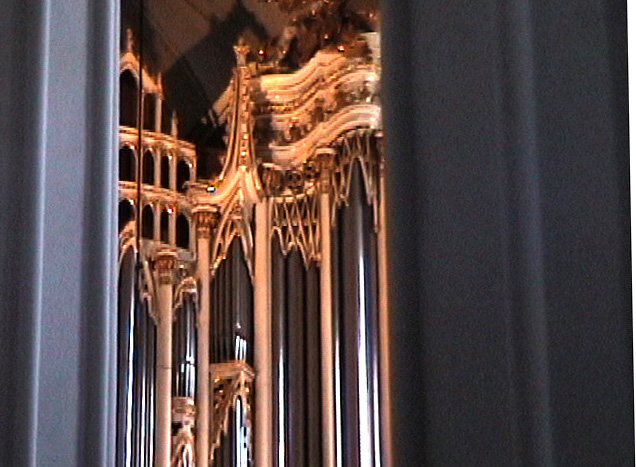 st stephans cathedral vienna author womack john