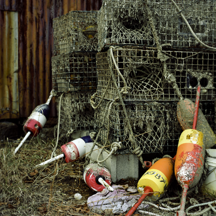 lobster pots out for the season author mello phil phillip