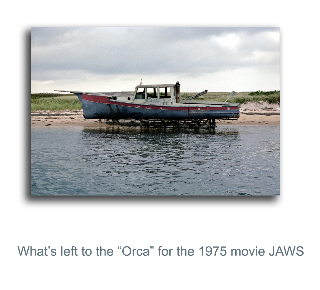 use in the movie jaws author mello phillip