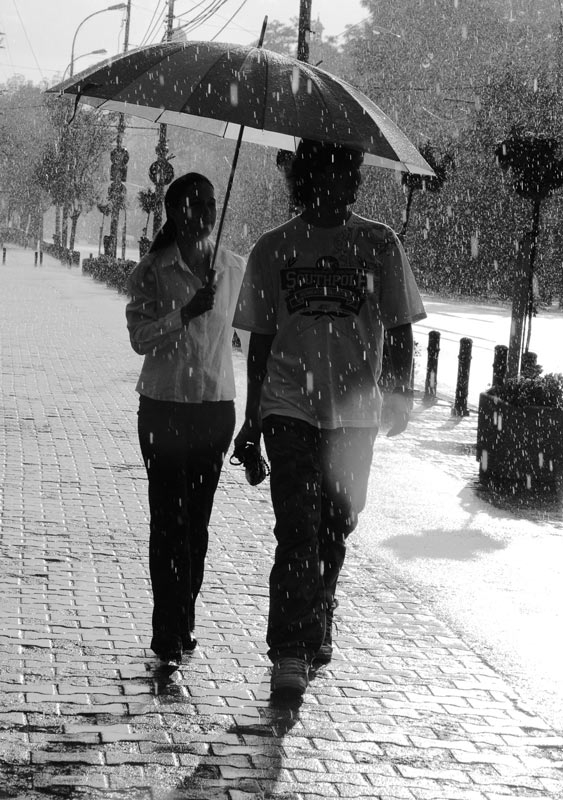 people walking in the rain author ursu mihail