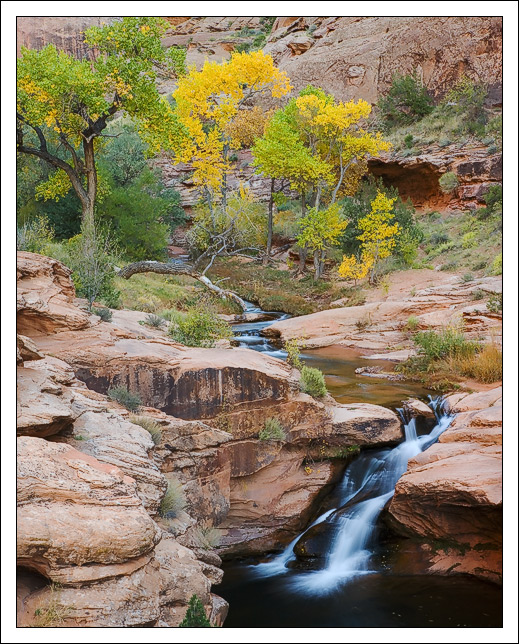 autumnal cottonwoods preside over a silky waterfal edge bret