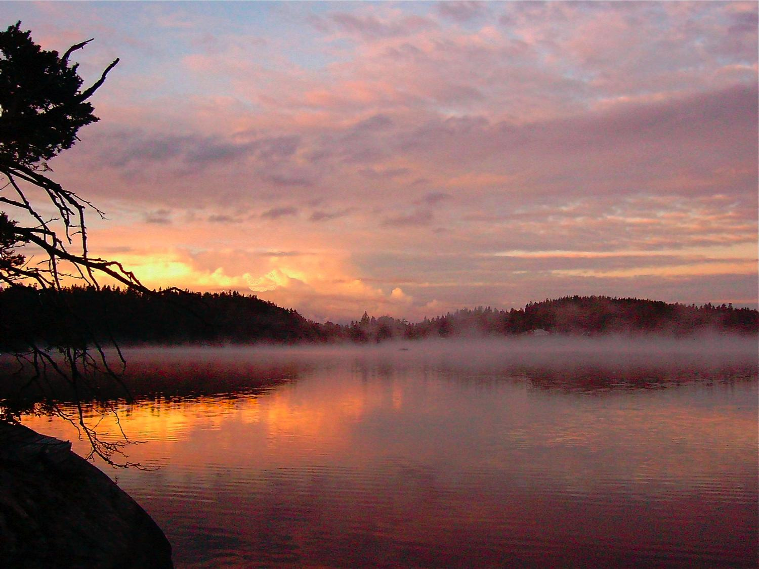 misty lake better look at the new below author s soini hannu